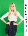 beautiful blonde woman in a... | Shutterstock . vector #172010951