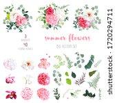 pink hydrangea  rose  white... | Shutterstock .eps vector #1720294711