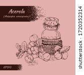 still life with branch acerola...   Shutterstock .eps vector #1720352314