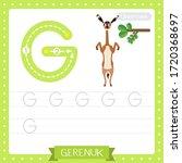 Letter G Uppercase Cute...