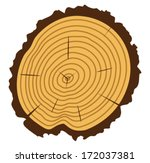 vector wooden cut of a tree log ... | Shutterstock .eps vector #172037381