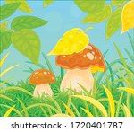 two thick edible mushrooms... | Shutterstock .eps vector #1720401787