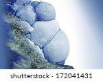 handmade bubble grunge... | Shutterstock . vector #172041431