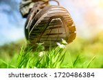 Small photo of human foot in a shoe tramples white flowers on a green field