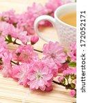 branches of flowering sakura... | Shutterstock . vector #172052171