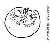 cartoon tomato   Shutterstock . vector #172060484