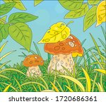 two thick edible mushrooms... | Shutterstock .eps vector #1720686361