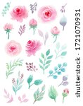 watercolor botanical... | Shutterstock . vector #1721070931