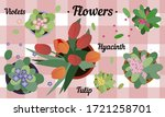top view of potted flowers.... | Shutterstock .eps vector #1721258701