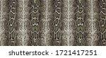 Python Skin  Snake Pattern ...