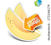 icon of sliced melon with the... | Shutterstock .eps vector #172146179