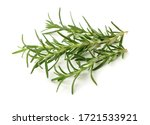 Branch Of Rosemary On White...