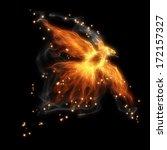 Burning Fiery Bird Flies On A...