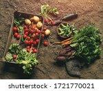 fresh vegetables  potato ... | Shutterstock . vector #1721770021