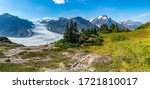 View of the Salmon Glacier and green meadow, British Columbia, Canada