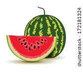 slice and watermelon in vector | Shutterstock .eps vector #172181324