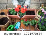 Planting Flowers Outdoors....