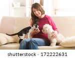 Stock photo little dog maltese and black and white cat sitting with owner on the sofa in home 172222631