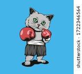 Boxer Kitties Fight...
