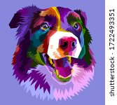 Colorful Border Collie Dog...