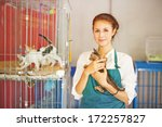 Stock photo woman working in animal shelter 172257827