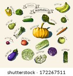 vector illustration of a set... | Shutterstock .eps vector #172267511