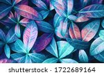 Natural Macro Texture Of...