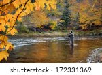 A Fly Fisherman Fishing For...