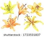 Elegant Lilies  Yellow Orange...