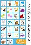 Animal Zoo Abc Alphabet. Cute...