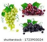 vector illustration of a set of ... | Shutterstock .eps vector #1723903024