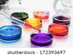 petri dishes in the laboratory... | Shutterstock . vector #172393697
