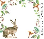 Gray Rabbit In A Frame From...