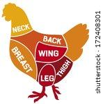 chicken cuts diagram  | Shutterstock .eps vector #172408301