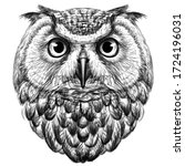 Owl. Sketch  Drawn  Graphic...