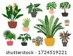 indoor plants and flowers in... | Shutterstock .eps vector #1724519221