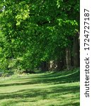 Summer Landscape. Avenham And...
