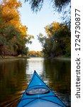 Kayaking. View On Autumn Trees...