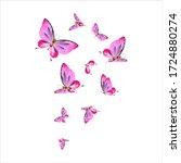 Beautiful Pink Butterflies...