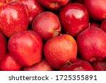 Apples  Malus Domestica  An...