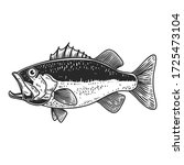Illustration Of Bass Fish In...