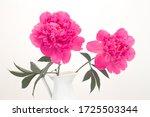 bouquet of peonies in white...   Shutterstock . vector #1725503344