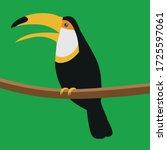 toucan. bird. a noisy bird. a...   Shutterstock .eps vector #1725597061