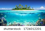 Tropical Island And Coral Reef  ...
