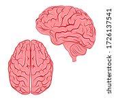 Vector Human Brain.organ...