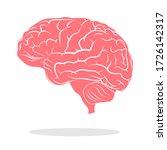 Color Brain Illustration Brain...
