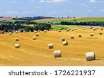 Small photo of Agriculture farm field haystacks landscape. Haystack rolls on agriculture field