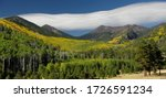 Lockett Meadow, San Francisco Peaks, Coconino National Forest, Arizona
