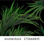 Tropical Plants  Vector Drawin...