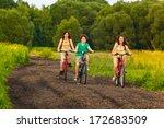 family biking  | Shutterstock . vector #172683509